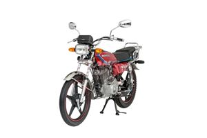 Picture of MONDİAL 110 UCG MOTOSİKLET