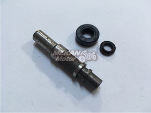 Picture of REPAIR KIT FOR MASTER CYLINDER OF FRONT BRAKE OLD MODEL MZ
